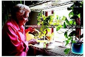Photo 14 - American House East I Senior Living, 17255 Common Rd., Roseville, MI 48066