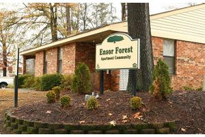 Ensor Forest, Columbia, SC