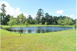 7015 Red Bug Lake Rd - Oviedo, FL 32765