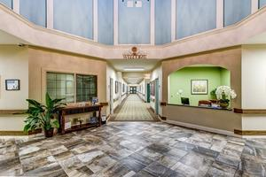 2930 Cypress Grove Meadows Drive - Houston, TX 77014