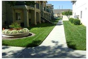 15878 Larkspur Street - Sylmar, CA 91342