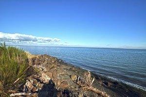 Photo 2 - Brookdale Ocean Shores, 1020 Catala Avenue, Ocean Shores, WA 98569