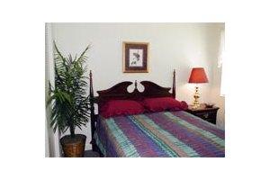 824 North Parsons Avenue - Brandon, FL 33510