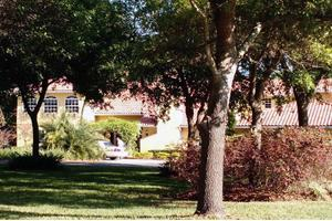 Angels Senior Living at Palm Harbor, Palm Harbor, FL