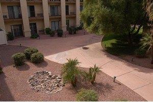Olive Grove, Phoenix, AZ