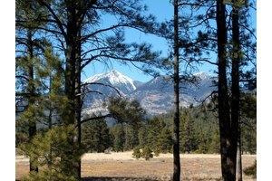 3150 N Winding Brook Rd - Flagstaff, AZ 86001