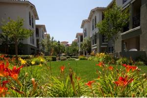 7980 Mayten Ave - Rancho Cucamonga, CA 91730