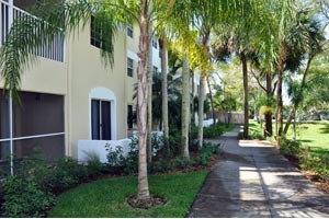 4201 Springtree Drive - Sunrise, FL 33351
