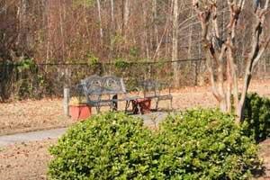 Photo 11 - Brookdale Lawrenceville, 1000 River Centre Place, Lawrenceville, GA 30043