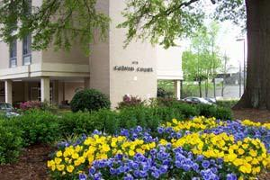 Photo 5 - Calvin Court Apartments, 479 East Paces Ferry Rd NE, Atlanta, GA 30305