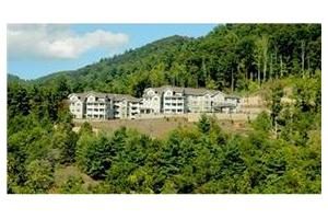 55 Piney Mountain Drive - Asheville, NC 28805