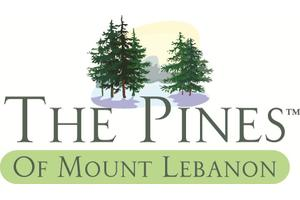The Pines of Mt. Lebanon, Pittsburgh, PA