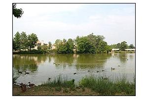 Photo 10 - Brookdale Echelon Lake, 207 Laurel Rd., Voorhees, NJ 08043