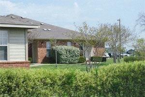 Photo 14 - Terrell Senior Terraces, 260 W. British Flying School Blvd., Terrell, TX 75160