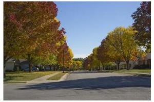 Photo 9 - John Knox Village, 1001 N.W. Chipman Road, Lees Summit, MO 64081