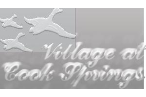 Village at Cook Springs, Pell City, AL